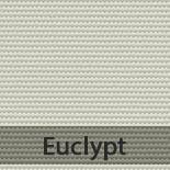 eculypt